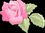 apliques jardim rosa 4