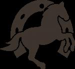 apliques festa cavalos 4