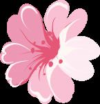 caixa bala bailarina rosa 5