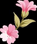 caixa bala bailarina rosa 6