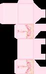 caixa carruagem bailarina rosa 1