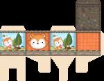 caixa cubo raposinha menino