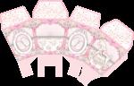 caixa sushi cha de bebe rosa