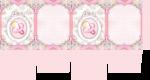 caixa visor cha de bebe rosa