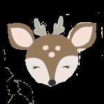 cervo 2