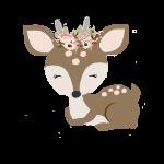 cervo 3