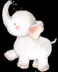 elefantinho aquarela 3