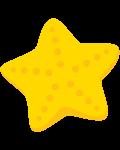estrela do mar 6
