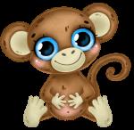 macaco cute