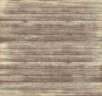 papel digital raposinha menino 2