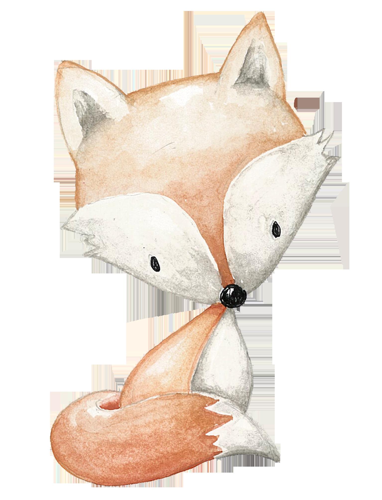 raposa 2