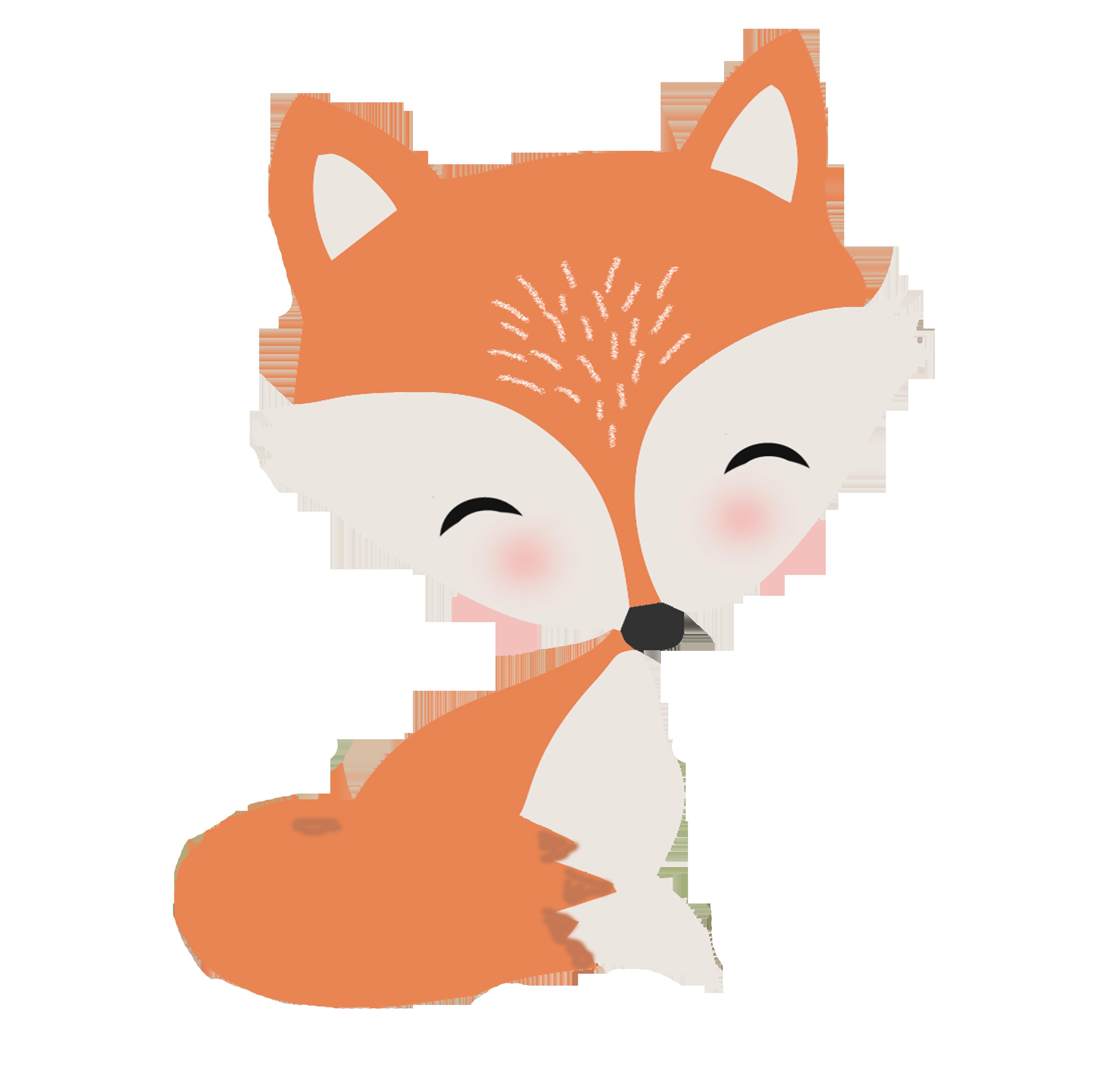 raposa 4