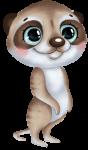suricato cute