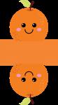 caixa laranja