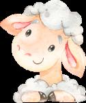 caixa quadrada com visor ovelhinha rosa 2