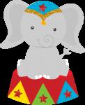 circo elefante
