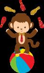 circo macaco