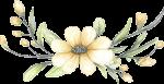 flores 2 1