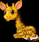 girafa 1 1