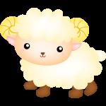 ovelha cute