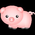 porco cute