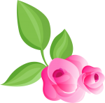 rosa 1 1